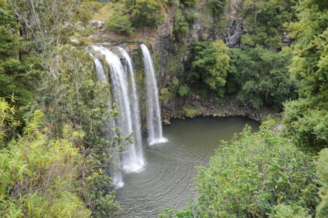 Wangarei Falls